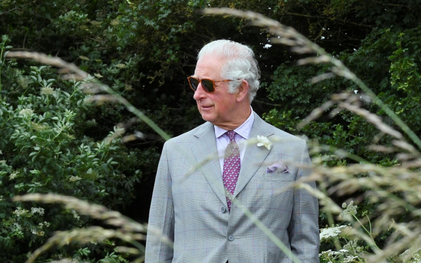 prince charles takes his environment message prime time in tv deal with amazon